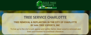 Tree Removal & Replanting in The City of Charlotte by AAA Tree Experts