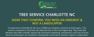 Info-Tree services