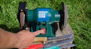 Know why stump grinding is recommended?