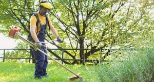 Benefits of Hiring Professional Lawn Care Services